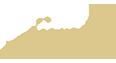 retina_PSH_Logo_Klein